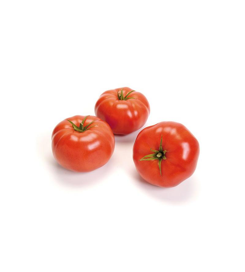 Tomate Matias