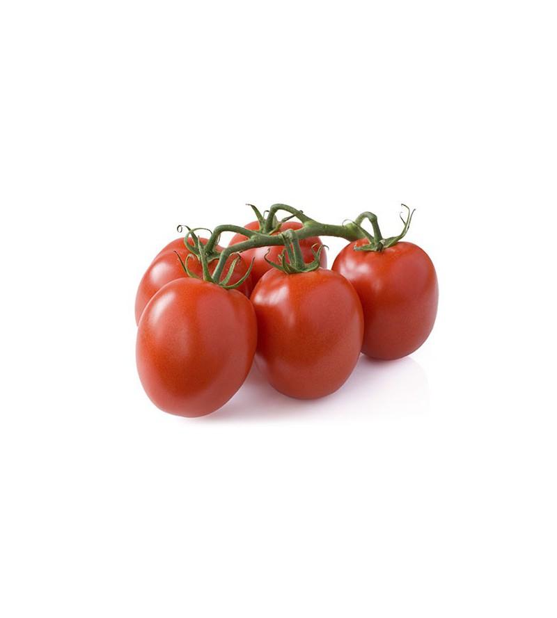 Tomate Pera Enrame - Trepador
