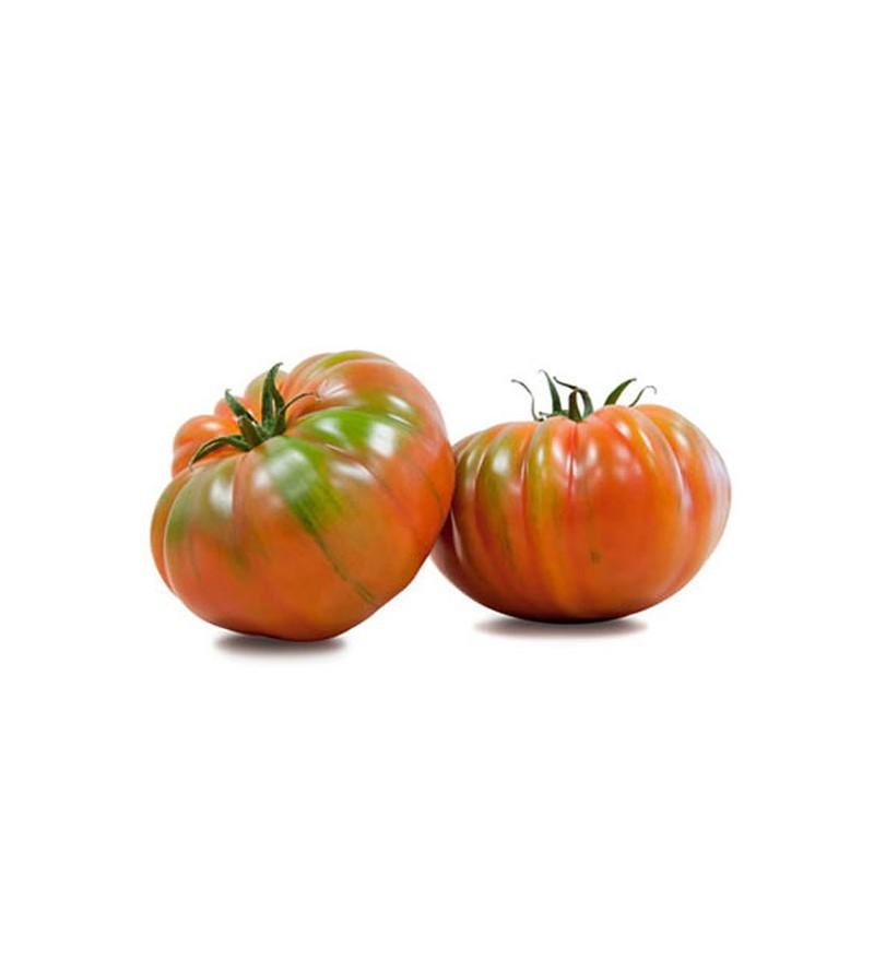 Tomate Raf Eco