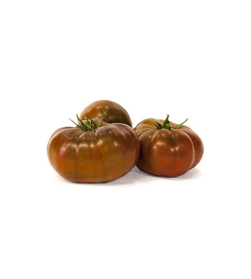 Tomate Raf Purpura