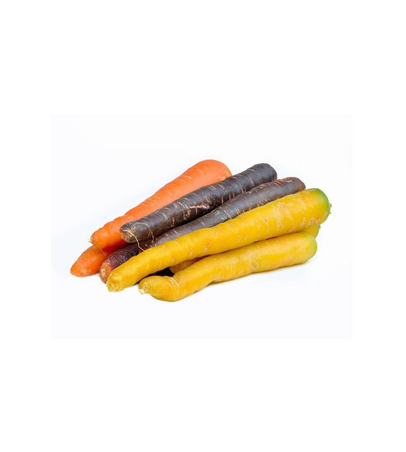 Zanahoria Colores