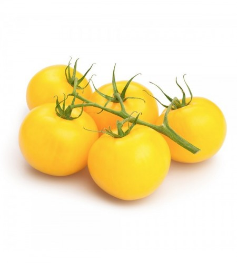 Tomate Amarillo Gran Sol