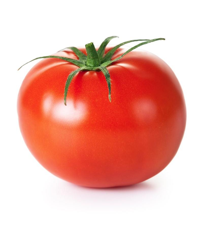 Resultado de imagen de tomate