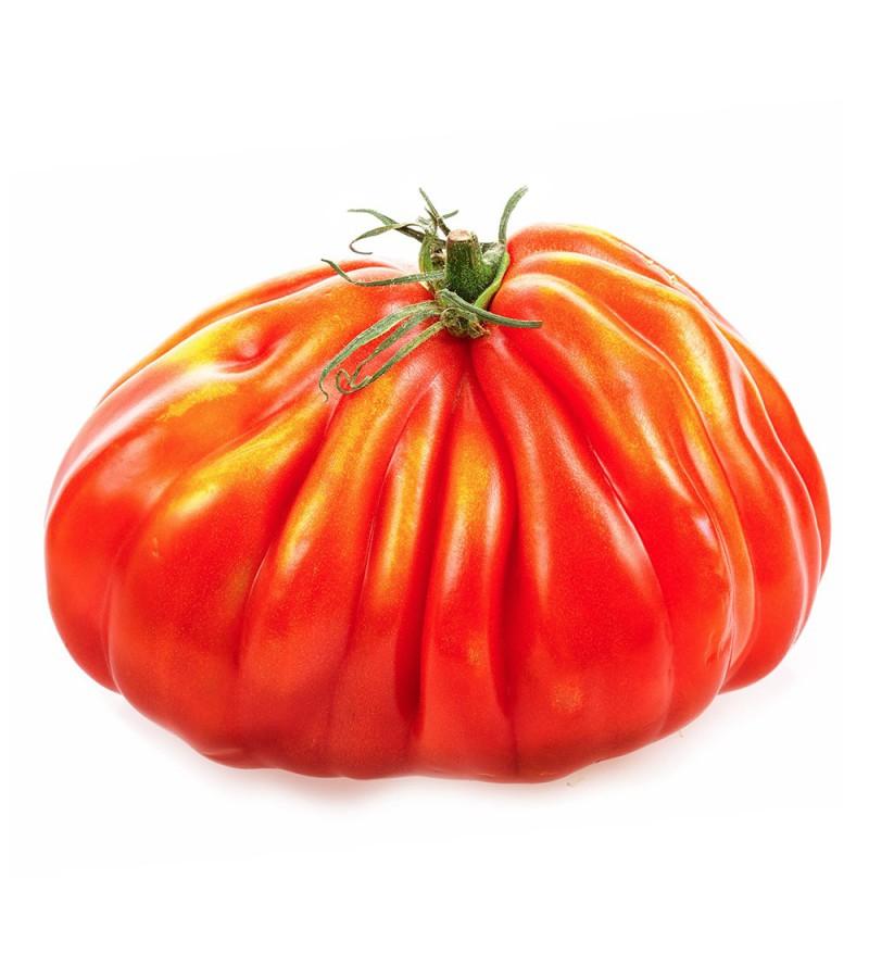 Tomate Raf Corazon del Buey Excellent