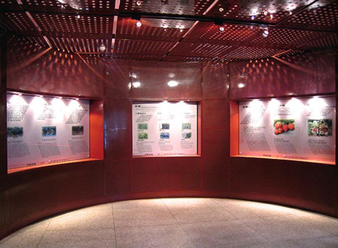 Museo de las fresas