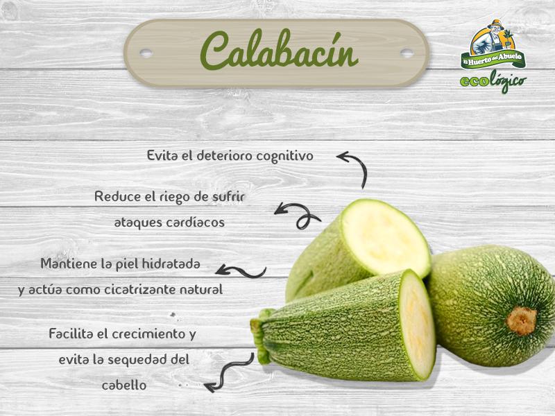 Increíbles beneficios del calabacín
